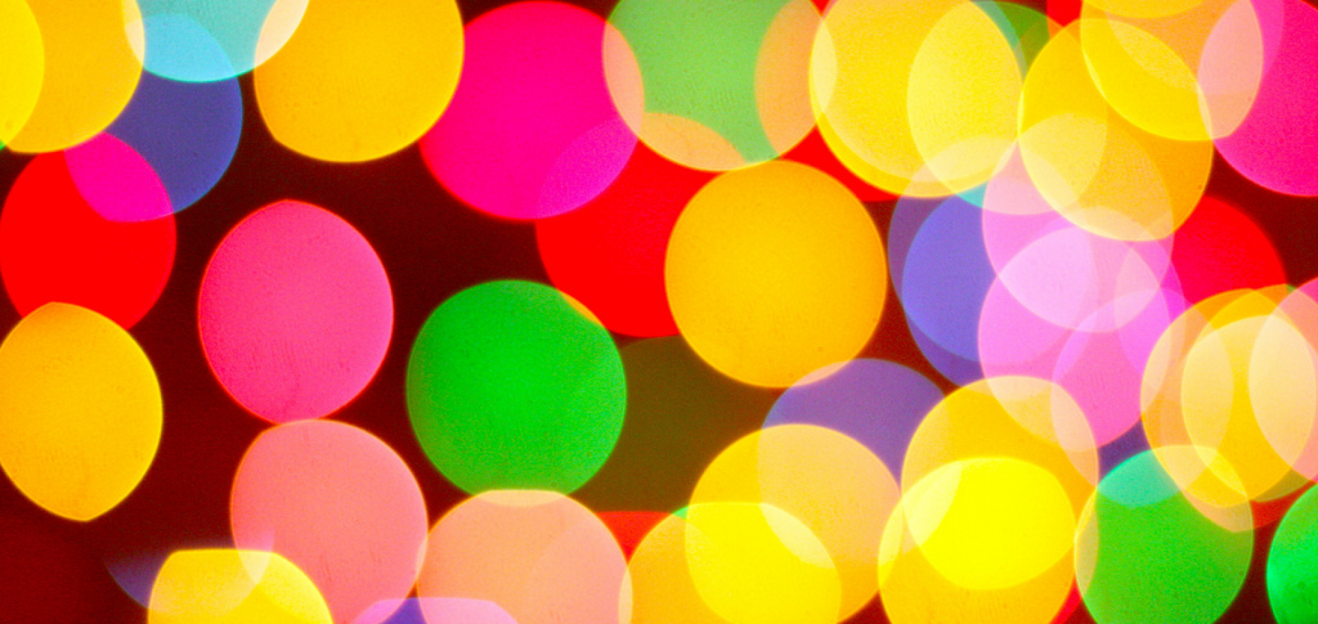 Holiday — Celebrate and Recharge